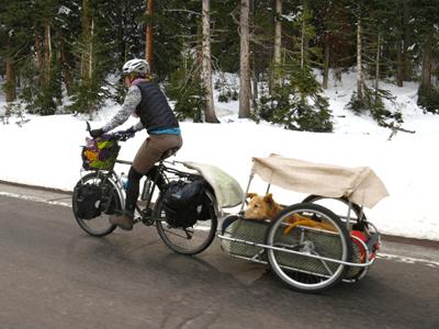Велоприцеп (Прицеп для велосипеда, скутера или электросамоката)