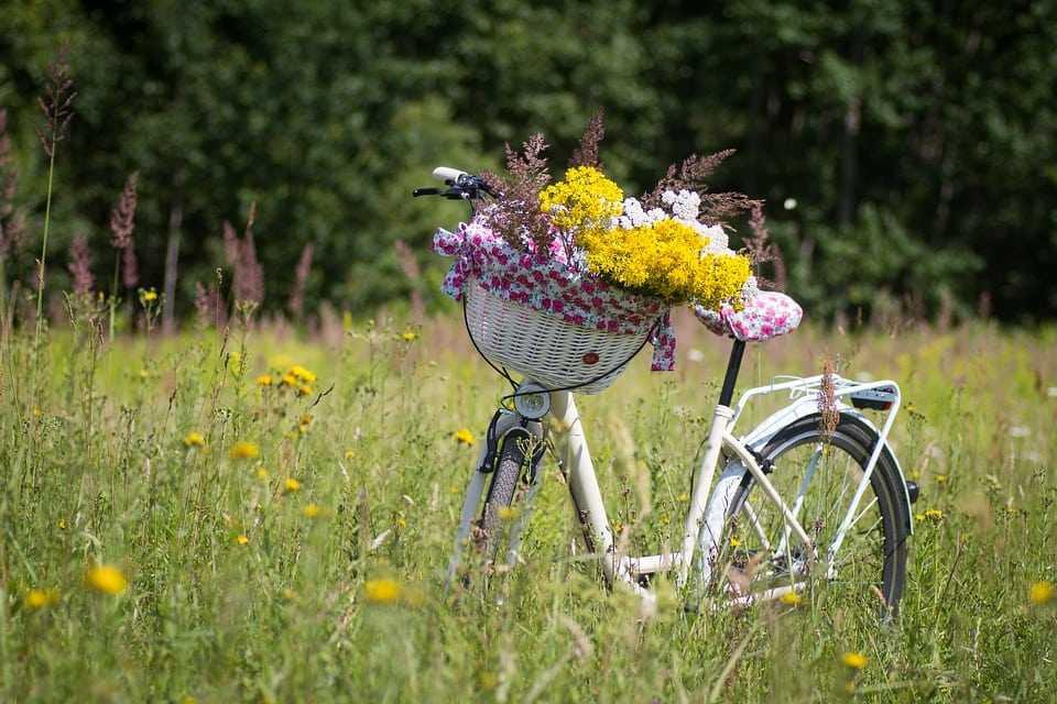 подарок для велосипедиста